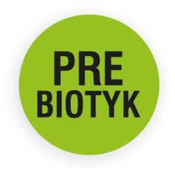 Prebiotyk
